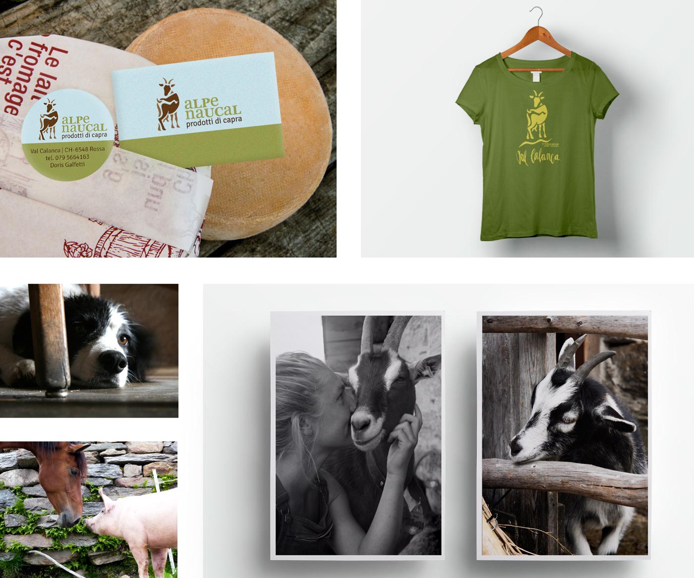 alpe-naucal_shirt_postkarte_etikett_visitenkarte_grafik_design_marina_grimme